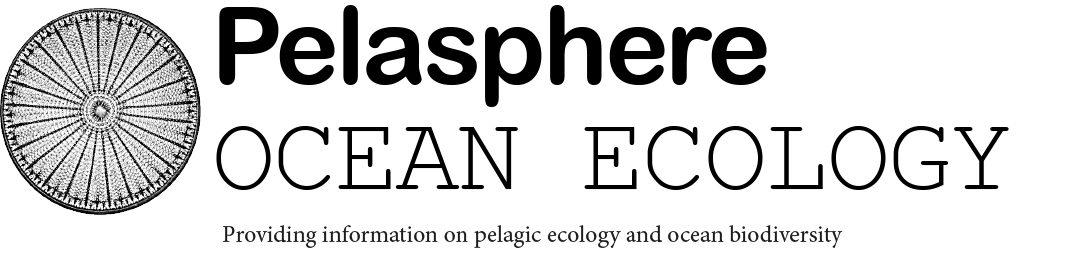 Pelasphere